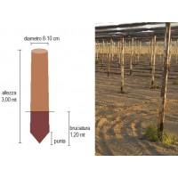 Palo di castagno scortecciato diametro 8-10 cm