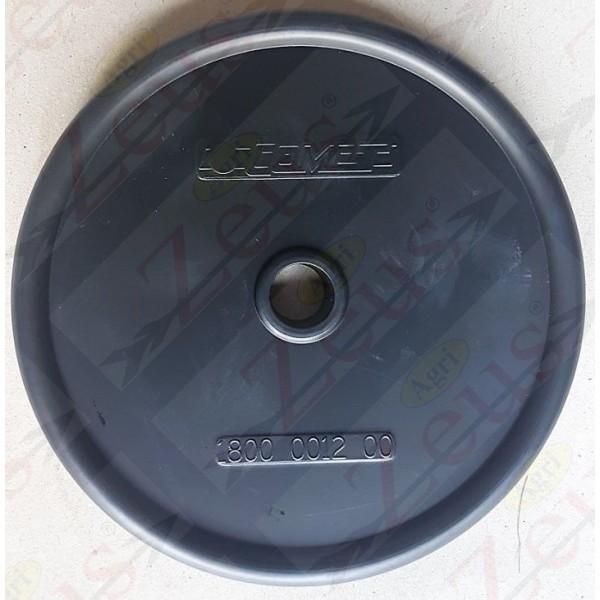 Membrana 125 per pompe serie IDS